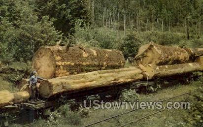 Logging Train - Misc, Oregon OR Postcard