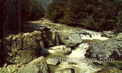 Umpqua River - Misc, Oregon OR Postcard