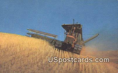 Wheat Harvest - Misc, Oregon OR Postcard