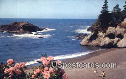 Pacific Ocean Seacoast - Misc, Oregon OR Postcard