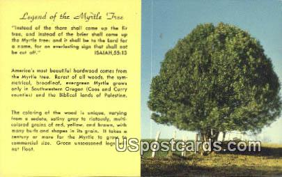 Legend of the Myrtle Tree - Misc, Oregon OR Postcard