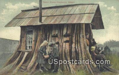 Cedar Stump Residence - Misc, Oregon OR Postcard