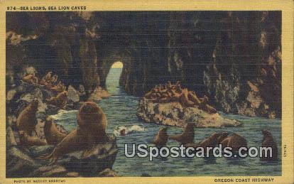 Oregon Coast Highway, OR Postcard       ;       Oregon Coast Highway, Oregon - Oregon Coast Highway Postcards