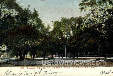 Dorney Park - Allentown, Pennsylvania PA Postcard