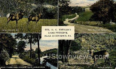 Col. HC Trexler's Game Preserve - Allentown, Pennsylvania PA Postcard