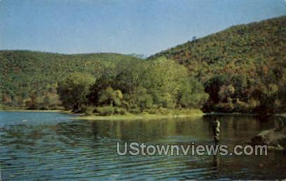 Fishing Big Bend Allegheny River - Bradford, Pennsylvania PA Postcard