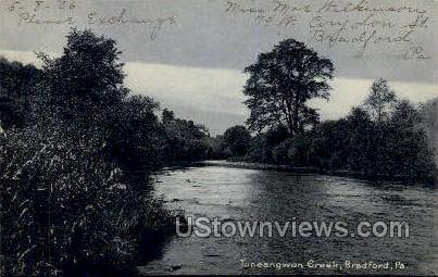 Tuneangwon Creek - Bradford, Pennsylvania PA Postcard