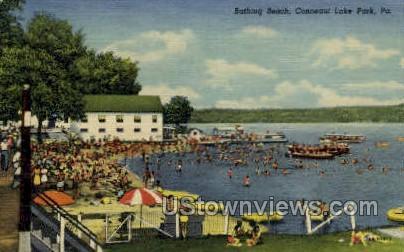 Conneaut Lake Park - Pennsylvania PA Postcard