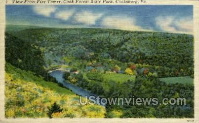 Cook Forest State Park - Cooksburg, Pennsylvania PA Postcard