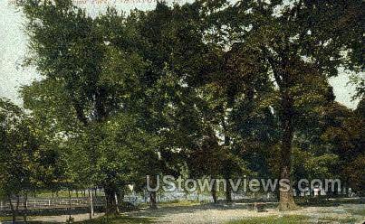 Park - Johnstown, Pennsylvania PA Postcard
