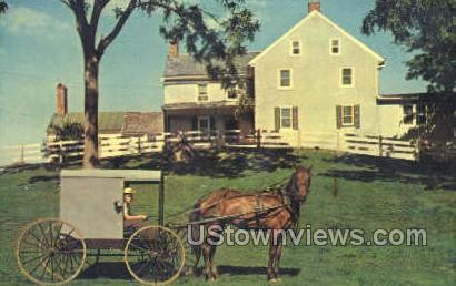 Amish Homestead - Lancaster, Pennsylvania PA Postcard