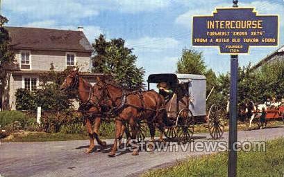 Amish Closed Buggy - Lancaster, Pennsylvania PA Postcard
