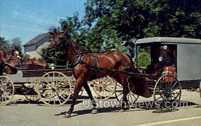 Amish Family in Horse & Buggy - Lancaster, Pennsylvania PA Postcard