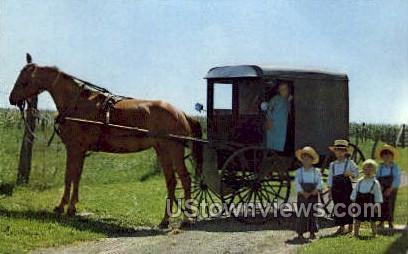 Horse & Buggey, Dutch Country - Lancaster, Pennsylvania PA Postcard