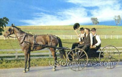 Courting Buggy, Amish - Lancaster, Pennsylvania PA Postcard