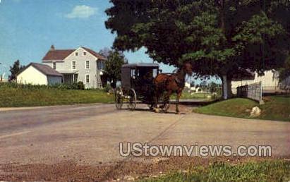 Boxlike Amish Family - Lancaster, Pennsylvania PA Postcard