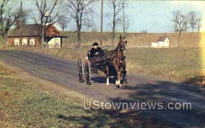 Amish Courting Buggy - Lancaster, Pennsylvania PA Postcard