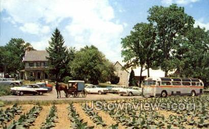 Amish Farm & House - Lancaster, Pennsylvania PA Postcard