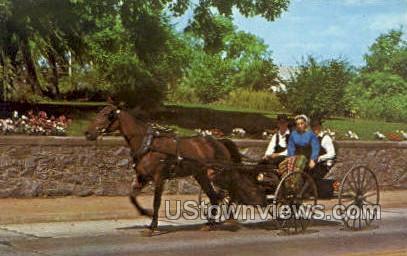 Young Amish People - Lancaster, Pennsylvania PA Postcard