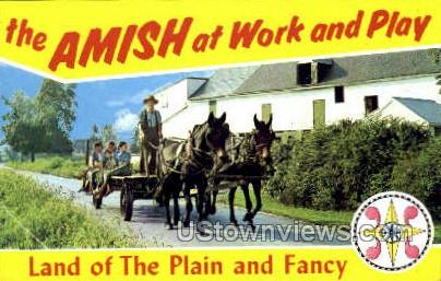 Amish Farmer - Lancaster, Pennsylvania PA Postcard