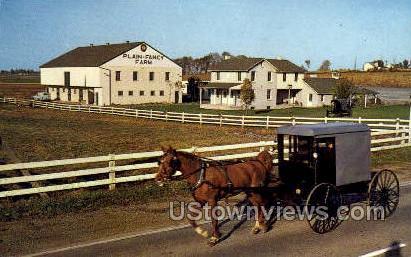 Plain & Fancy Farm - Lancaster, Pennsylvania PA Postcard