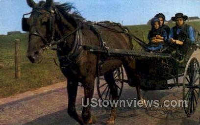 Amish Family, Buggy - Lancaster, Pennsylvania PA Postcard
