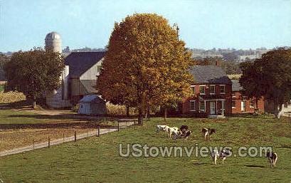 Typical Amish Farm - Lancaster, Pennsylvania PA Postcard