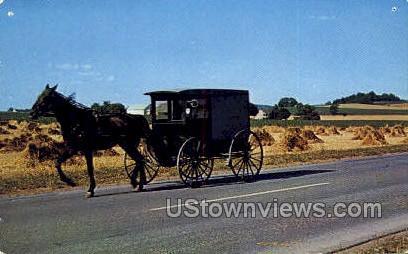 Amish Market Wagon - Lancaster, Pennsylvania PA Postcard