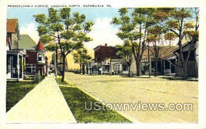 Pennsylvania Ave. - Matamoras Postcard