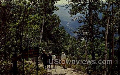 Nature Trail - Misc, Pennsylvania PA Postcard