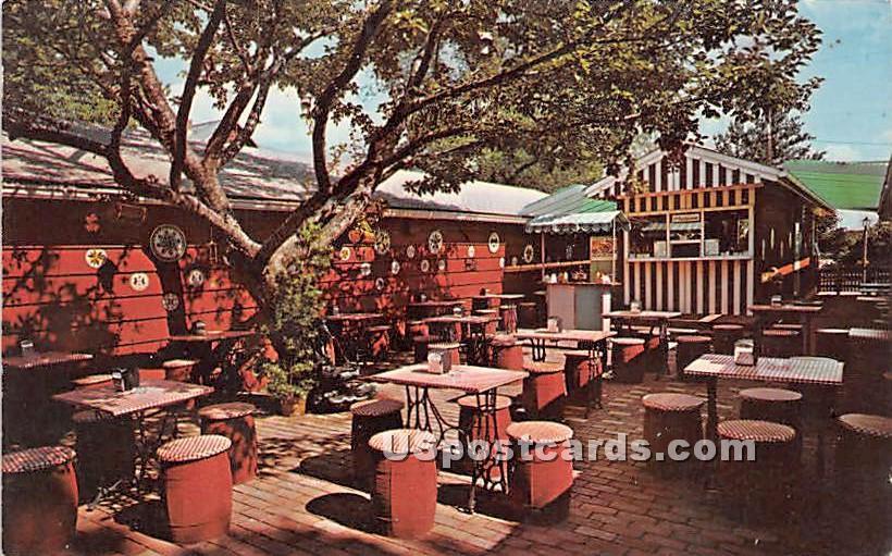 Backyard Outdoor Snack Bar - Mt Pocono, Pennsylvania PA Postcard