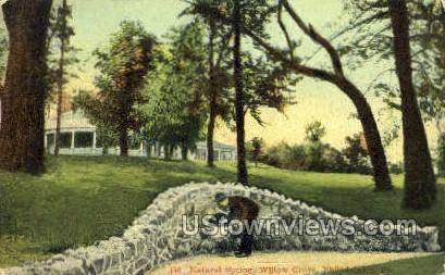 Natural Spring, Willow Grove - Philadelphia, Pennsylvania PA Postcard