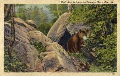 I Cant Bear to Leave - Delaware Water Gap, Pennsylvania PA Postcard