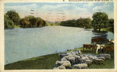 Allegheny River - Warren, Pennsylvania PA Postcard