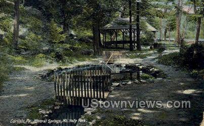 Mineral Springs, Mt. Holly Park - Carlisle, Pennsylvania PA Postcard