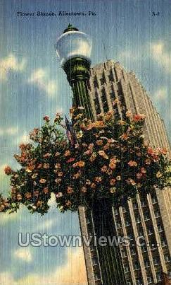 Flower Stands - Allentown, Pennsylvania PA Postcard