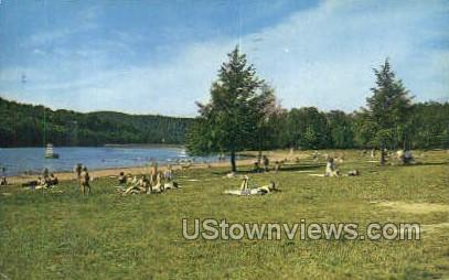 Champan Dam State Park - Warren, Pennsylvania PA Postcard