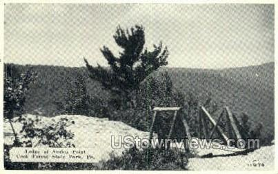 Ledge at Senica Point - Cook Forest State Park, Pennsylvania PA Postcard