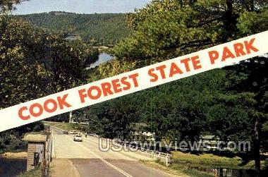 Cook Forest State Park, Pennsylvania, PA, Postcard