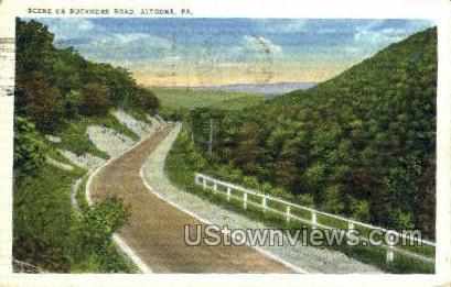 Buckhorn Road - Altoona, Pennsylvania PA Postcard