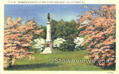 Dogwood Blossoms - Valley Forge, Pennsylvania PA Postcard