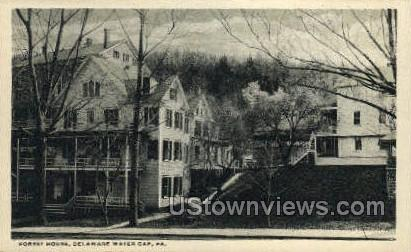 Forest House - Delaware Water Gap, Pennsylvania PA Postcard