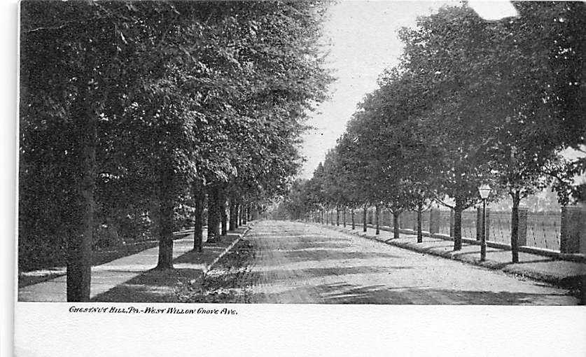 Chestnut Hill PA