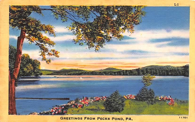 Pecks Pond PA