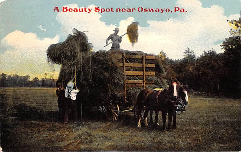 Oswayo PA