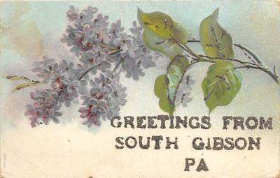 South Gibson PA
