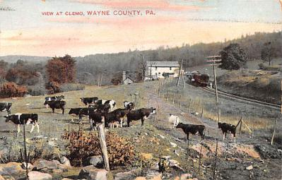 Wayne County PA