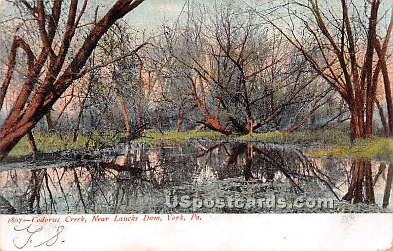 Codorus Creek, YMCA Grounds - York, Pennsylvania PA Postcard