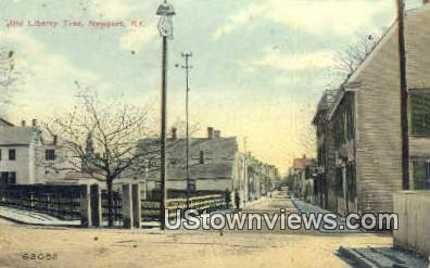Old Liberty Tree - Newport, Rhode Island RI Postcard