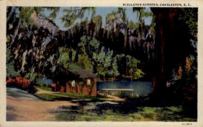Middleton Gardens - Charleston, South Carolina SC Postcard